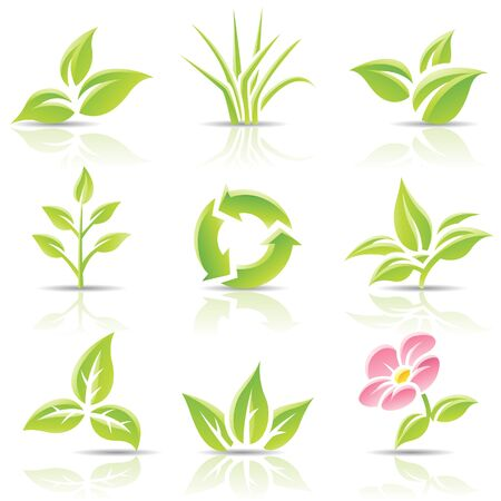 pink bushes: Vector icons of leaves and a flower