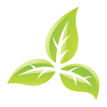 buisson: Illustration of Green Glossy Leaves Icon isolated on a white background Banque d'images