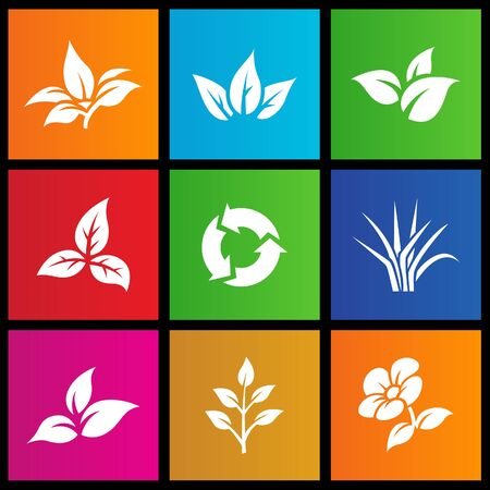 windows 8: vector illustration of metro style leaves and flower