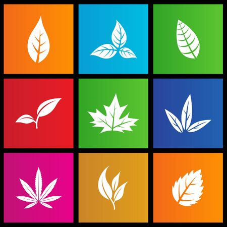 windows 8: vector illustration of metro style leaves icons Stock Photo