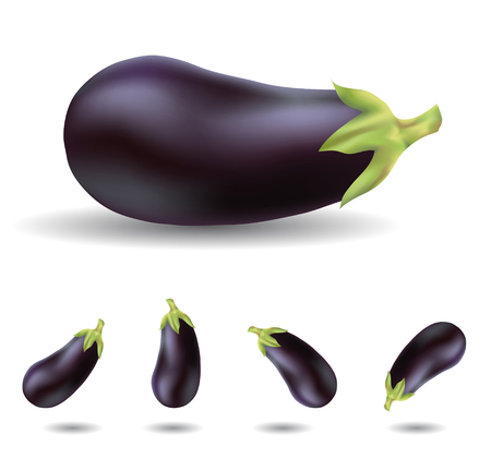 eggplant isolated on white close up and in different angles