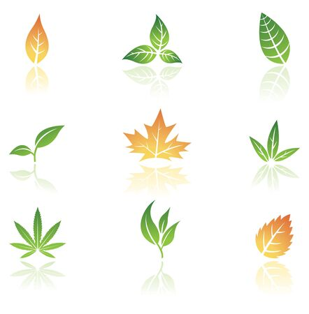sprouts: Leaves icons isolated on a white background