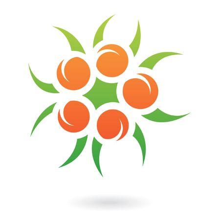 fruit orange: El logotipo de color planta de icono y elementos de diseño