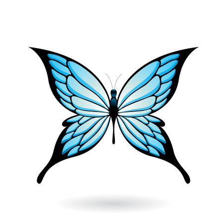 animal shadow: Vector Illustration of a Colorful Butterfly isolated on a white background Illustration