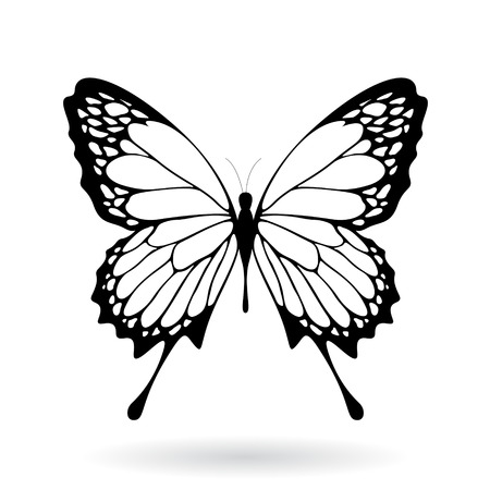 Vector Illustration of a Black Butterfly Silhouettey isolated on a white background Ilustração