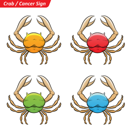 Vector Illustration of Colorful Cancer Astrological Zodiac Star Signs Sketch