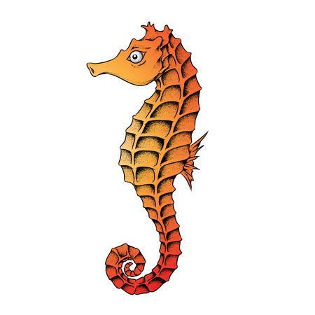 Vectorillustratie van een Seahorse geïsoleerd op een witte achtergrond Vector Illustratie