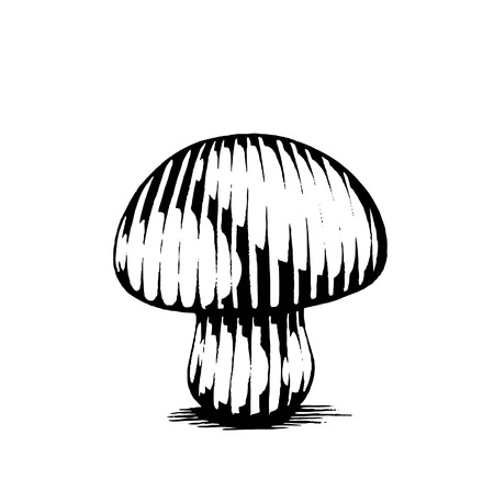scratchboard: Vector Illustration of a Scratchboard Style Ink Drawing of a Mushroom Illustration