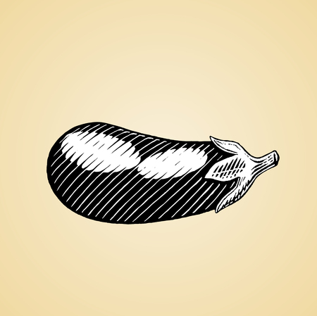 Vector Illustration of a Scratchboard Style Ink Drawing of an Eggplant with White Fill