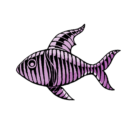 Vector Illustration of a Scratchboard Style Ink and Watercolor Drawing of a Striped Fish Illustration
