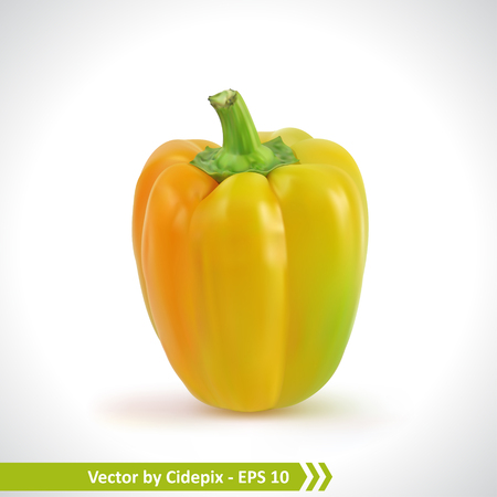 Gradient Mesh Vector Illustration of a Photo Realistic Yellow Pepper