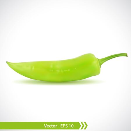 Vector Illustration of a Photo Realistic Green Pepper