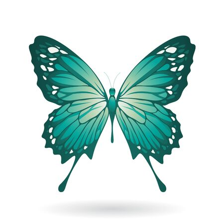 Illustration of a Colorful Butterfly isolated on a white background Stock fotó
