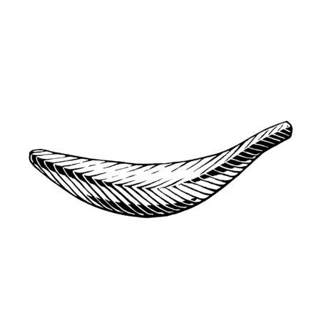 Illustration of a Scratchboard Style Ink Drawing of a Banana Reklamní fotografie