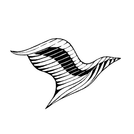 Illustration of a Scratchboard Style Ink Drawing of a Bird