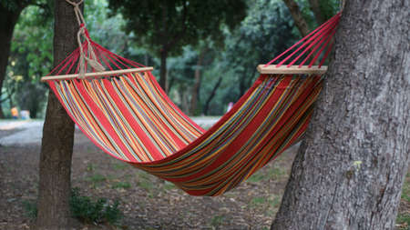 hammock in a park Stock Photo
