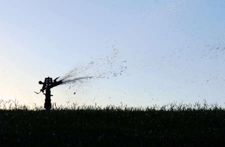 Lawn sprinkler silhouette spraying water in the grass photo