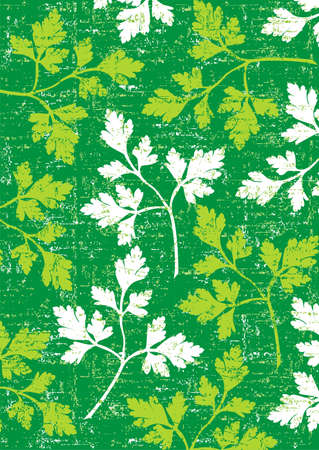herbes: Parsley wallpaper vertical on green background. Illustration