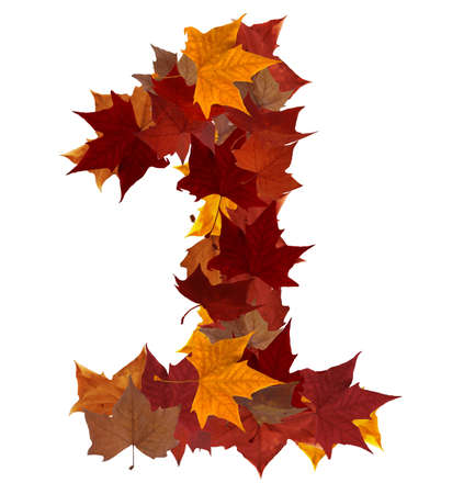 october: Number 1 made with autumn leaves. Isolated on white with clipping path, so you can easily cut it out and place over the top of a design. Find others symbols in our portfolio to compose your own words.