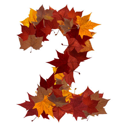number 2: Number 2 made with autumn leaves isolated on white with clipping path. So you can easily cut it out and place over the top of a design. Find others symbols in our portfolio to compose your own words.