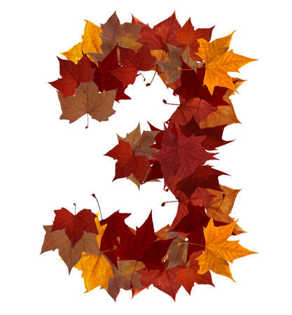 three month: Number 3 made with autumn leaves isolated on white with clipping path. So you can easily cut it out and place over the top of a design. Find others symbols in our portfolio to compose your own words.