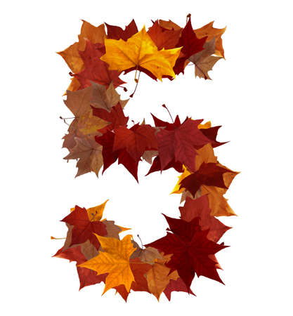 number five: Number 5 made with autumn leaves isolated on white with clipping path. So you can easily cut it out and place over the top of a design. Find others symbols in our portfolio to compose your own words.