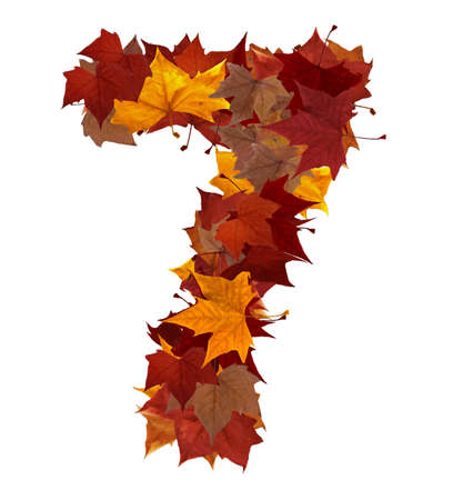 top 7: Number 7 made with autumn leaves. Isolated on white with clipping path, so you can easily cut it out and place over the top of a design. Find others symbols in our portfolio to compose your own words.
