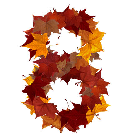 Number 8 made with autumn leaves isolated on white with clipping path, so you can easily cut it out and place over the top of a design. Find others symbols in our portfolio to compose your own words. photo