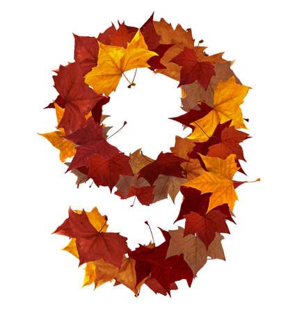 numero nueve: Número 9 hecha con hojas de otoño. Aislado en blanco con trazados de recorte. Buscar otros personajes de nuestra cartera para componer sus propias palabras.