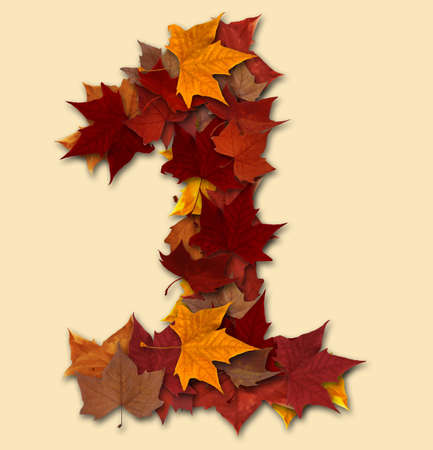 Number 1 drop shadow made with autumn leaves Isolated with clipping path, so you can easily cut it out and place over the top of a design. Find others types in our portfolio to compose your own words. photo