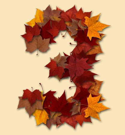 Number 3 drop shadow made with autumn leaves Isolated with clipping path, so you can easily cut it out and place over the top of a design. Find others types in our portfolio to compose your own words. photo