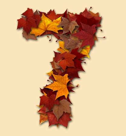 Number 7 drop shadow made with autumn leaves Isolated with clipping path, so you can easily cut it out and place over the top of a design. Find others types in our portfolio to compose your own words. Stock Photo