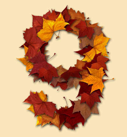 Number 9 drop shadow made with autumn leaves Isolated with clipping path, so you can easily cut it out and place over the top of a design. Find others types in our portfolio to compose your own words. photo