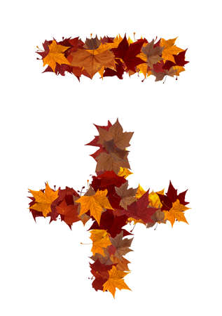 Plus and minus symbol made with autumn leaves isolated on white with clipping path. Find others symbols in our portfolio to compose your own words. photo
