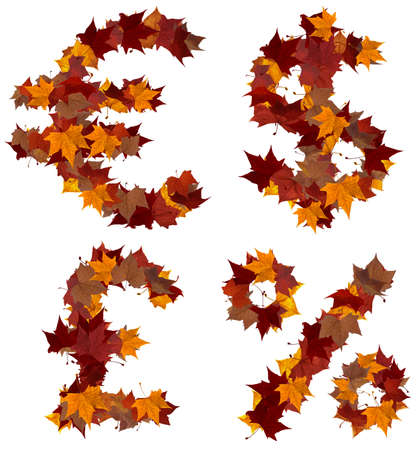 Cash symbols made with autumn leaves isolated on white. Find others symbols in our portfolio to compose your own words. photo