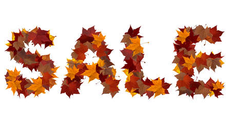 Sale word made with autumn leaves isolated on white. Find others symbols in our portfolio to compose your own words. photo
