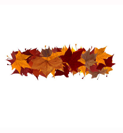 Minus symbol made with autumn leaves isolated on white. Find others symbols in our portfolio to compose your own words. photo