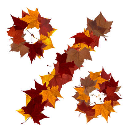 Percentage symbol made with autumn leaves isolated on white background. Find others symbols in our portfolio to compose your own words. photo