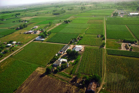 Aerial view of green country fields in Uruguay.  photo