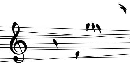 음악 개념 그림에 대한 사랑. 고 대비 뮤지컬 오각형과 조류 배경입니다.