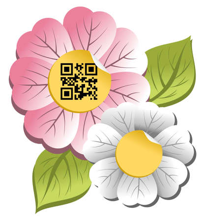 decode: Spring concept  colorful flower with qr code label isolated over white background