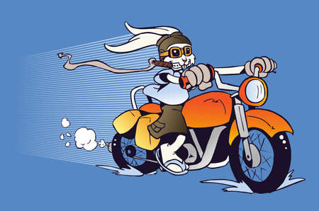 motorcycle rider: One rabbit mounted on a motorcycle  background in cartoon style illustration  Vector file layered for easy manipulation and custom coloring