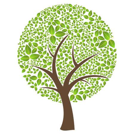 arboles de caricatura: Aislado tiempo abstracto primavera �rbol con hojas de composici�n.