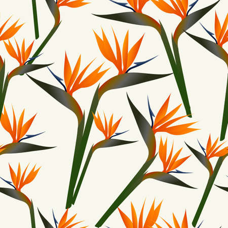 birds of paradise: SSpring time contemporary bird of the paradise flowers seamless pattern. Vector file layered for easy manipulation and custom coloring.