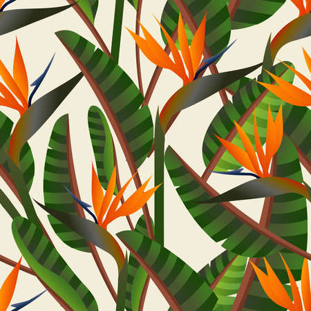 Spring time contemporary bird of the paradise flowers seamless pattern. Vector file layered for easy manipulation and custom coloring. Vector