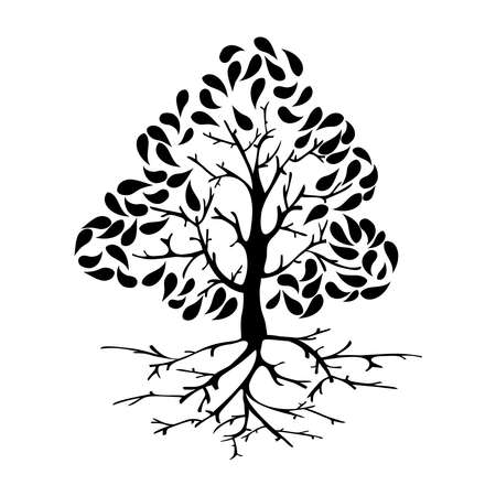 Black tree silhouette illustration with roots. Vector file layered for easy manipulation and custom coloring. Stock Vector - 20602617