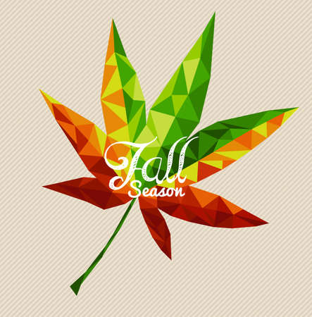 Fall season text over colorful geometric autumn leaf.  Vector