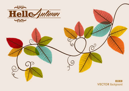fall leaves on white: Hello autumn text tree branches with transparent leaves background
