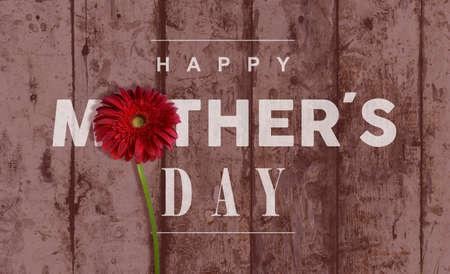 幸せな母の日ビンテージ レトロな木製の背景マクロをグリーティング カードやポスターのデザインに最適の赤い花を閉じます。