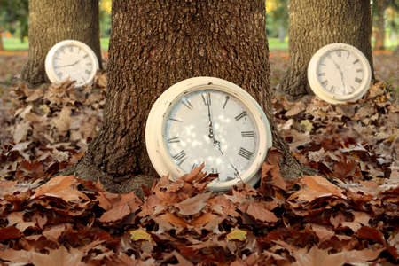 time: Fall time creative concept with clocks and trees on autumn leaf ground forest background. Ideal for season campaign, book cover or poster. Stock Photo
